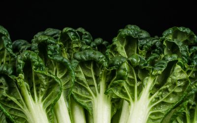 3 Ways to Add Leafy Greens Into Your Diet